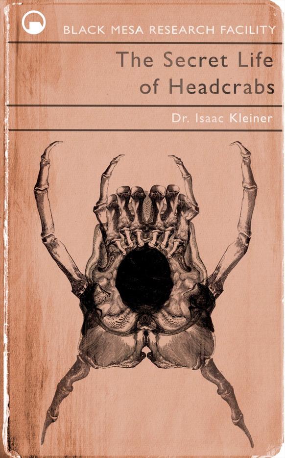 Döm boken efter omslaget #4